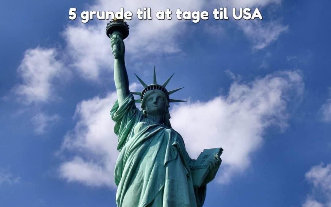 5 grunde til at tage til USA